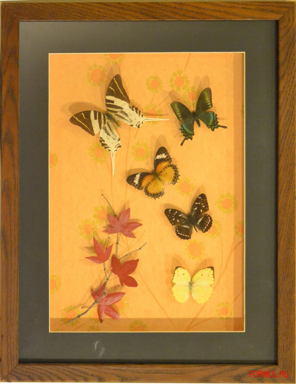 Как сделать панно бабочки